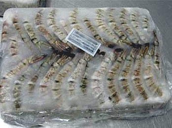EU eases requirements to import Bangladeshi shrimp