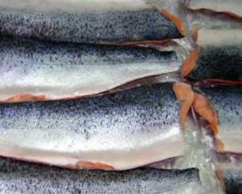 Salmon farmers lose USD 16 million in exports due to aviation strike